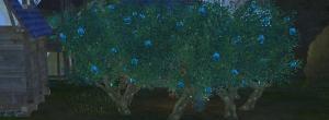 Акхиумное дерево